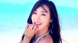 korea fans 5