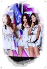 Korea Fans